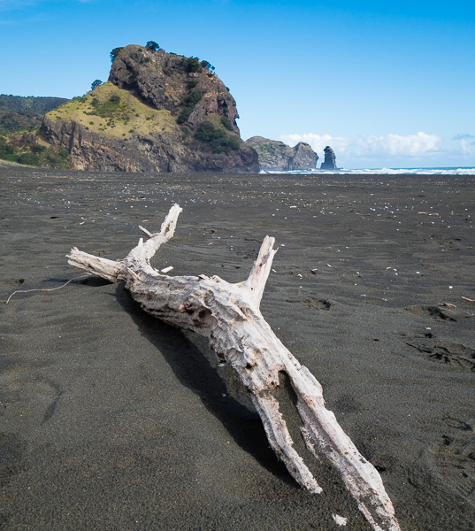 Piha Beach with Lion Rock in the background.