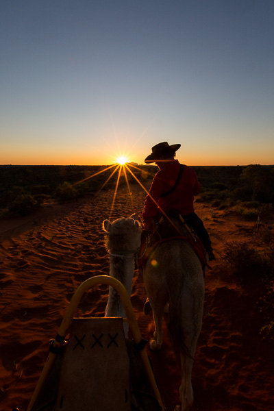 Sunset Camel Ride in Uluru, I don't think it could've been prettier.