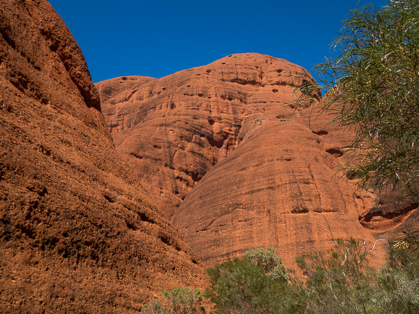 A view of the huge domed rock formations that make up Kata Tjuta.