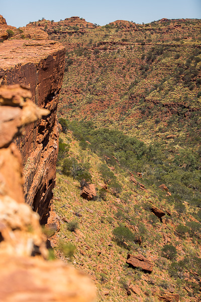 View into the canyon from the rim walk.