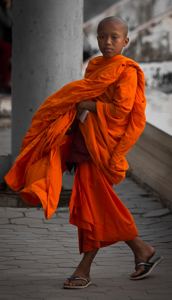 Buddhist monks in different colored robes are a staple of Southeast Asia.
